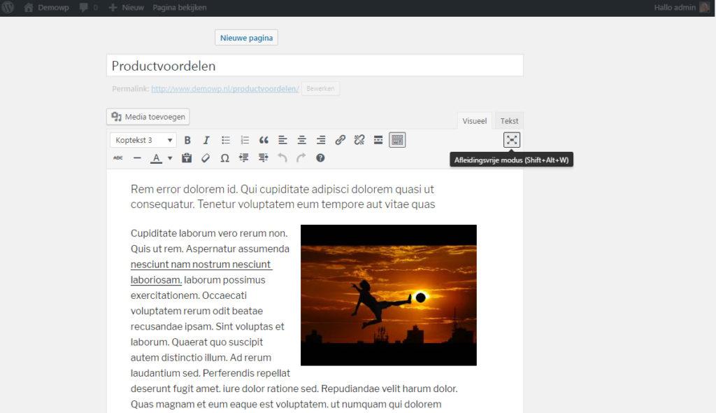 full-screen-bewerken-afleidingsvrije-modus-wordpress-handleiding