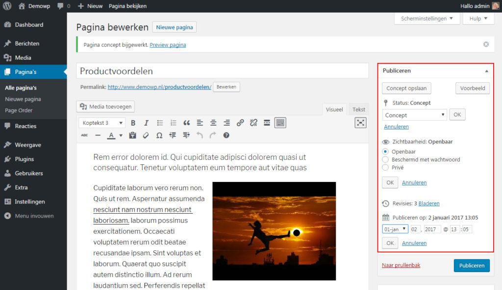 opslaan-publiceren-content-inhoud-wordpress-handleiding