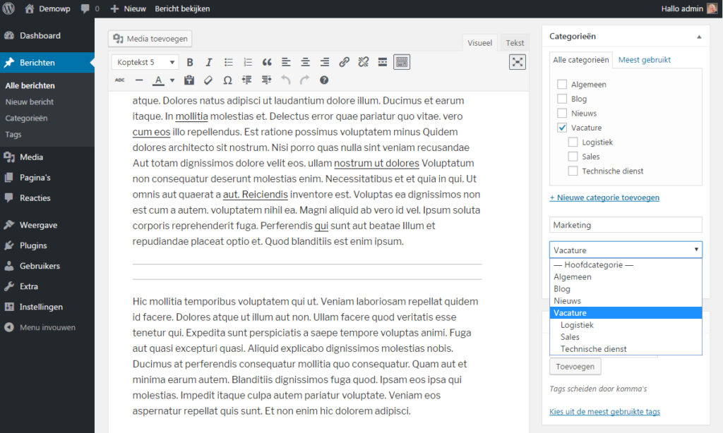 categorieen-binnen-bericht-toevoegen-wordpress-handleiding